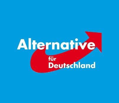 """Européennes : l'AfD fait du """"Dexit"""" l'axe directeur de son programme"""