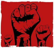 Washington D.C. : l'ultra-gauche casse tout sur son passage (vidéo)
