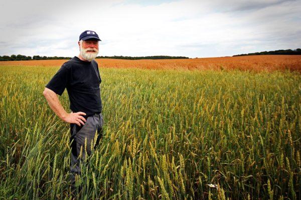 Agriculteurs : vivre avec moins de 350 euros par mois
