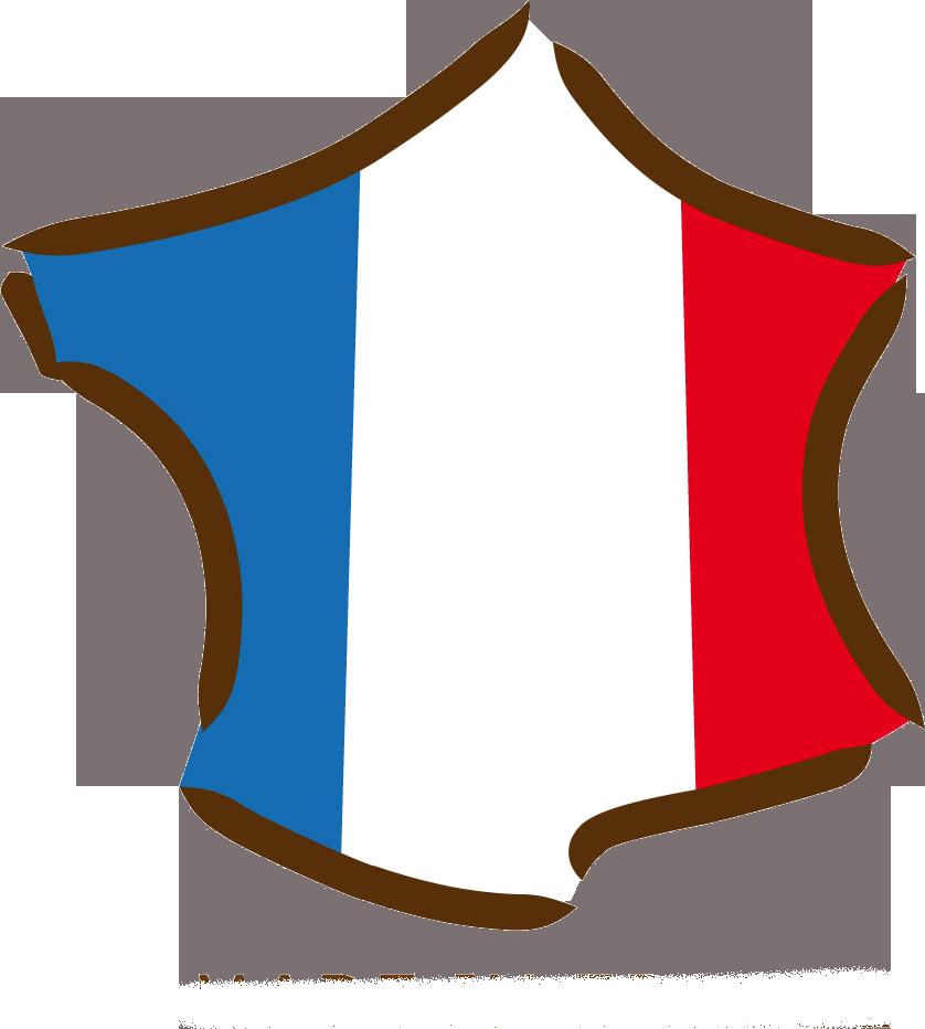 La France championne du monde des familles fortunées