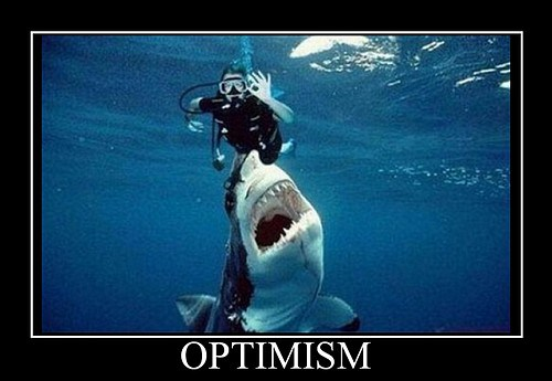 optimism-shark