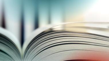 « Un livre français » : que cache le rapport du BASIC ?