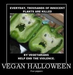 Qui sont les militants vegans et autres militants autoproclamés de la cause animale ?