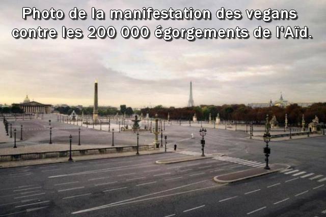 Paris : photo de la manifestation des vegans contre les 200 000 égorgements de l'Aïd (DÉTENTE)