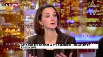 """Régis Le Sommier dénonce l'obsession du """"complot russe"""" sur les Gilets Jaunes ou autre (VIDÉO)"""