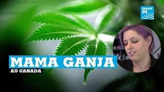 Canada : des mères de famille (aux cheveux roses, on précise quand même) se vantent de fumer du cannabis
