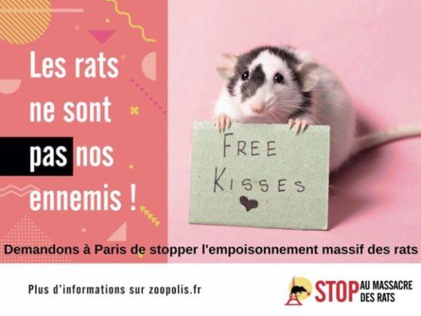 Youpi, Paris s'enlaidit !