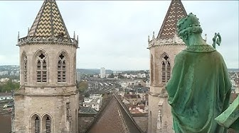 Cathédrale Saint-Bénigne : la petite forêt de Dijon (REPORTAGE)
