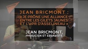 Jean Bricmont : « Je prône une alliance entre les Gilets Jaunes et l'UPR d'Asselineau » (VIDÉO)