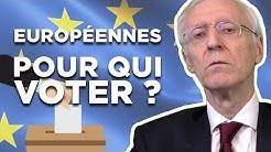 Pour qui voter le 26 mai ? (Henry de Lesquen)