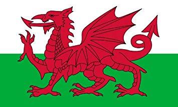 Pays de Galles : le Brexit Party approche les 40% !