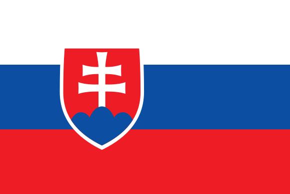 Élections européennes en Slovaquie : les droites divisées mais très majoritaires (sondage)