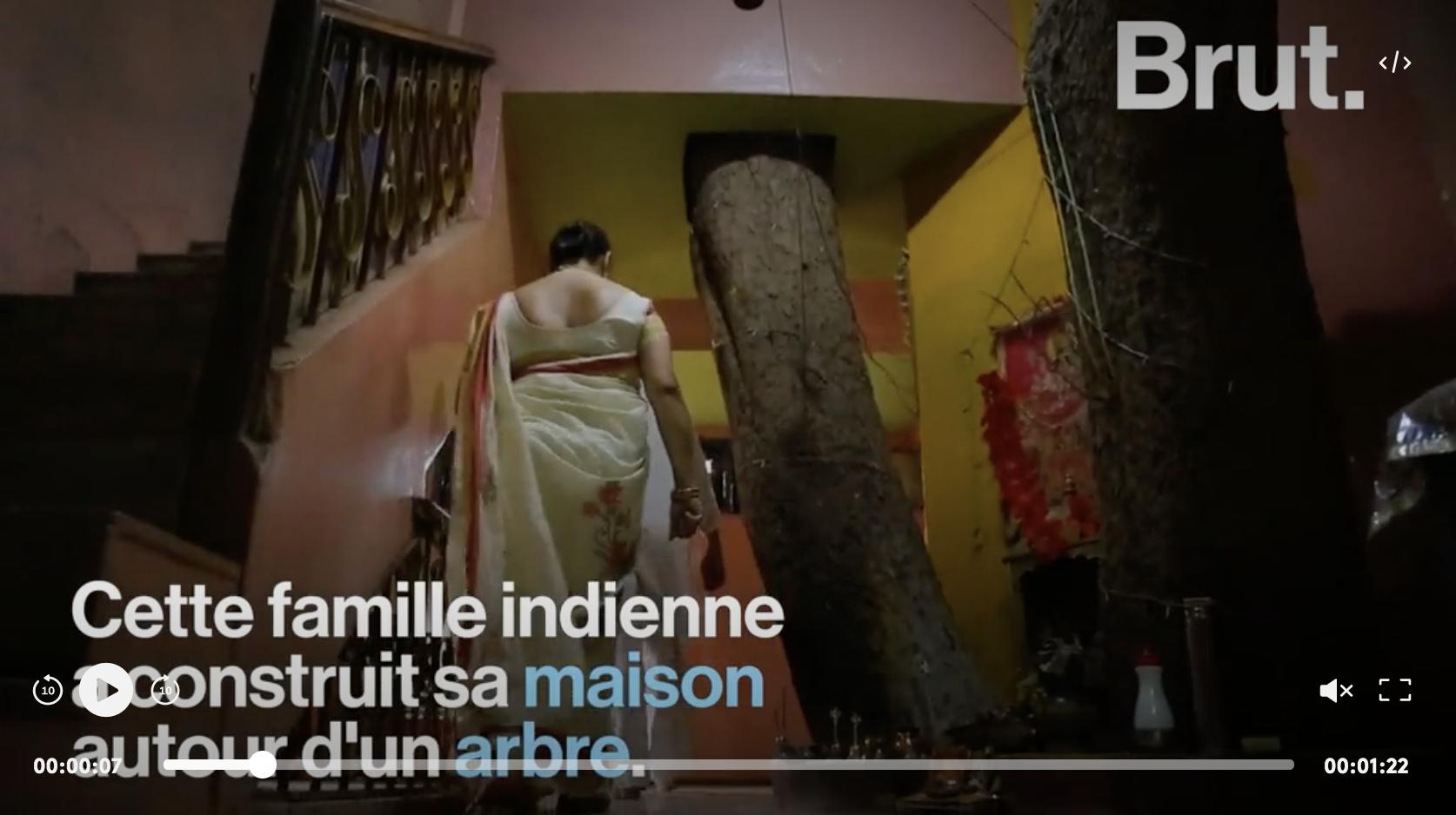 En Inde, une famille bâtit sa maison autour d'un arbre centenaire (VIDÉO)