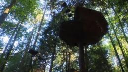 Vacances : des cabanes dans les arbres (VIDÉO)