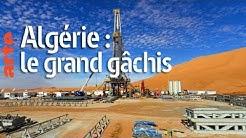 Algérie : le grand gâchis (Le Dessous des cartes)