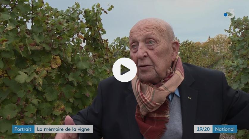Viticulture : Pierre Galet, mémoire mondiale de la vigne