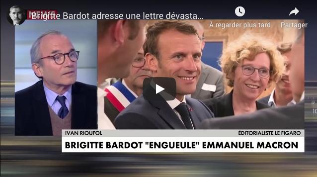 Brigitte Bardot adresse une lettre dévastatrice à Emmanuel Macron