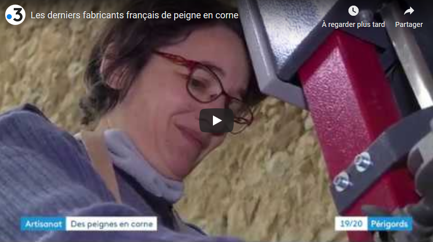 Reportage : les derniers fabricants français de peigne en corne (VIDÉO)