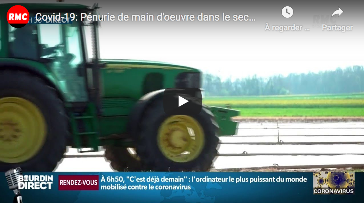 Covid-19 : Pénurie de main d'œuvre dans le secteur agricole