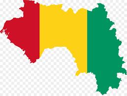 """Dr Noël Tordo : """"En Guinée, nous donnons de la chloroquine et cela a ses effets sur les premières phases"""" (VIDÉO)"""