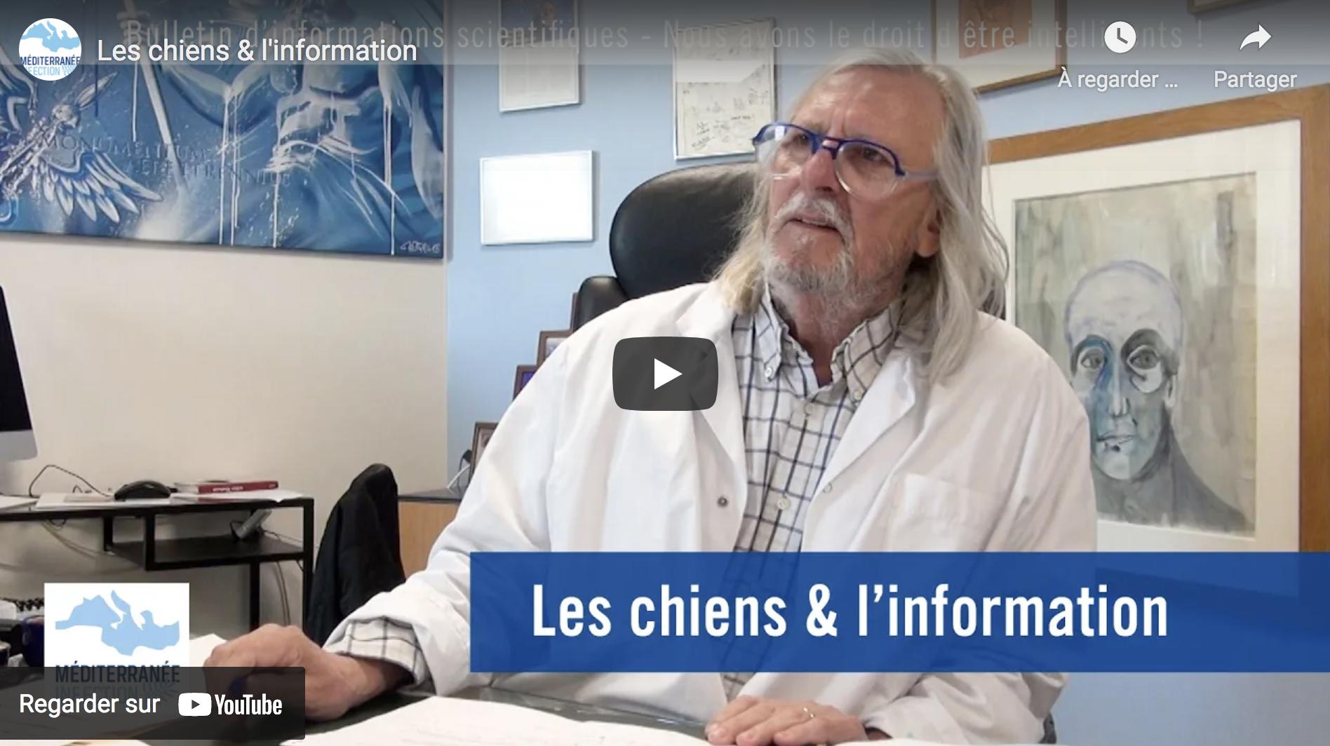 """""""Les chiens & l'information"""" (Pr Didier Raoult)"""