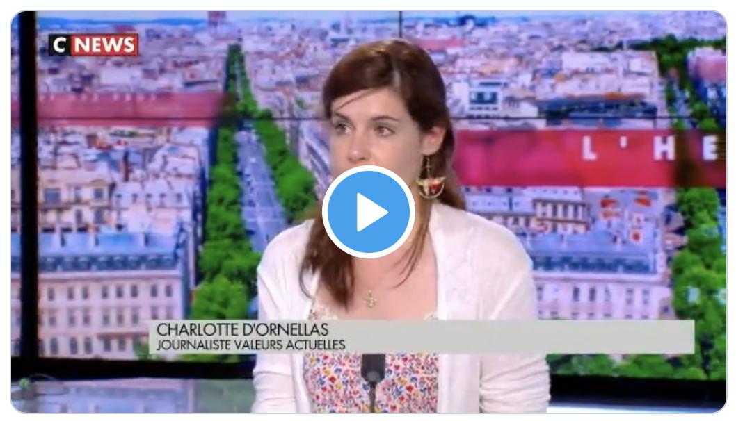 """Pour le monde politico-merdiatique, insulter le RN (""""marque satanique"""", """"lèpre populiste"""") n'est pas un dérapage (Charlotte d'Ornellas)"""